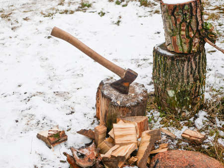 Cutting wood with an ax. Hand sharpened ax, for cutting wood. harvesting firewood Reklamní fotografie - 151247299