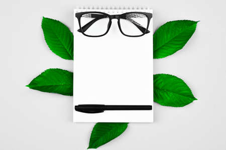 black glasses with a pen on a notebook, on a grey background. leaves under the notebook Reklamní fotografie - 151447454