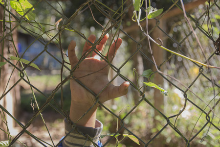 hand with metal fence,no freedom,