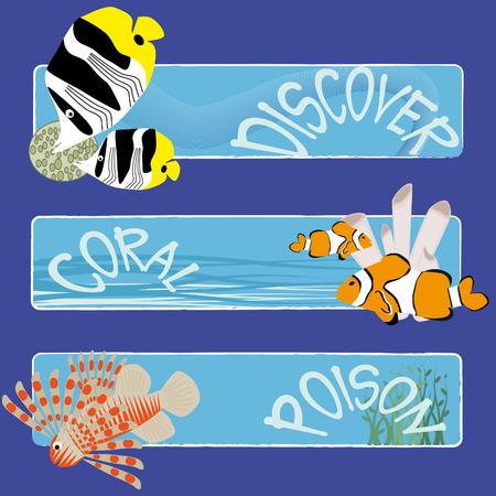 lionfish: three tropical fish banners no text indicate sea world creatures