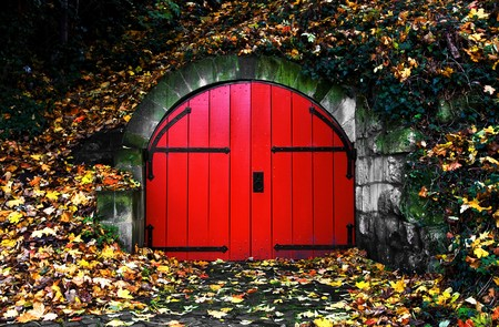 old red door covered in autumn leaves
