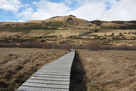 swampland: Boardwalk across swampland to protect environment from damage