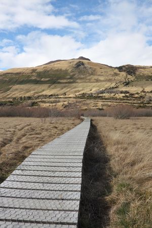 swampland: Boardwalk across swampland to protect the environment from damage
