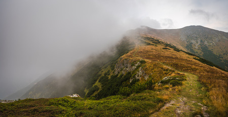scrub grass: Hiking Trail on the Hill with Fog in the Mountains on Overcast Day