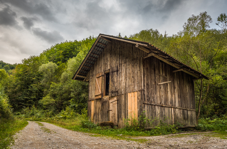 Old Wooden Shack on Forest Road Stock Photo