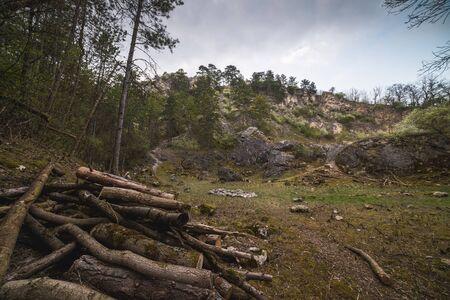 Rocky Landscape. Pile of Wood in Back Quarry (Zadní lom) Near Mikulov, Czech Republic