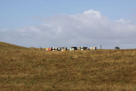 Beehives in a row on a hilltop