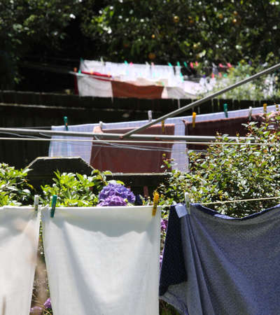 Washing on 3 clotheslines in a row in backyards photo