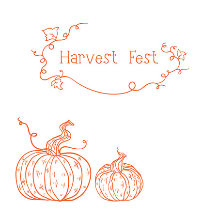 sketched: Vector card with two orange sketched pumpkins. can be used as harvest fest card.