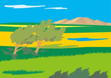 grassland: Savanna