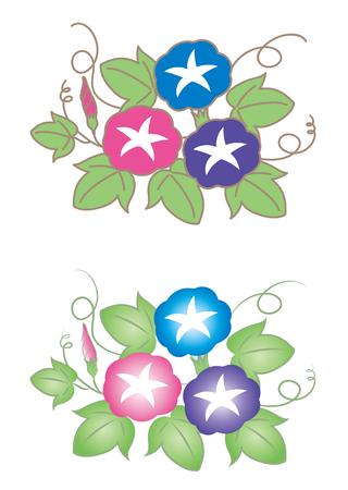 나팔꽃 (2 세트)
