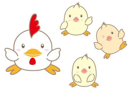 pollitos: Pollo y polluelos