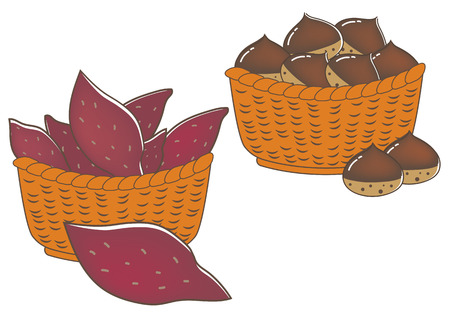 Sweet potatoes and chestnuts Illustration
