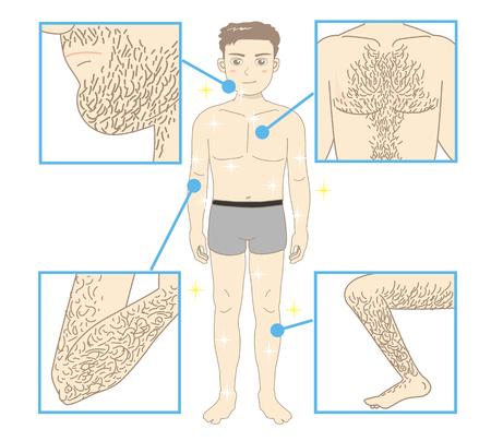 남성 미용 제모 - 몸 전체와 신체의 모든 부분 일러스트