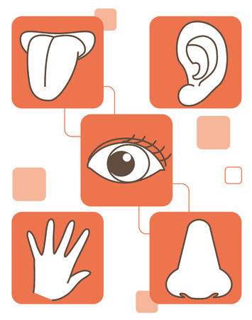 Five senses set Illustration