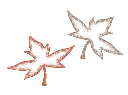 Vintage  drawing of fallen leaves