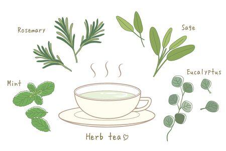 Herbal Tea Set-Hot tea and Cup Illustration