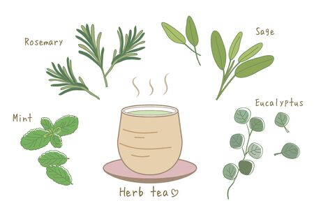 Herbal Tea Set-Hot tea and Asian style Cup