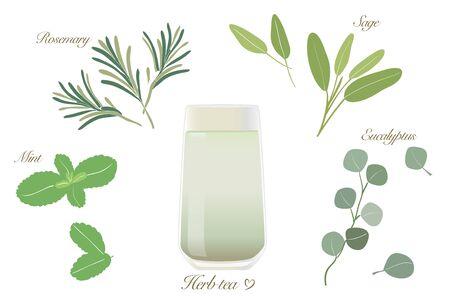 Herbal Tea Set-Cold tea and glass Illustration