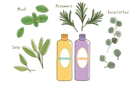 Organiczny szampon - zestaw różnych ziół