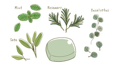Organic soap - Various herbs set