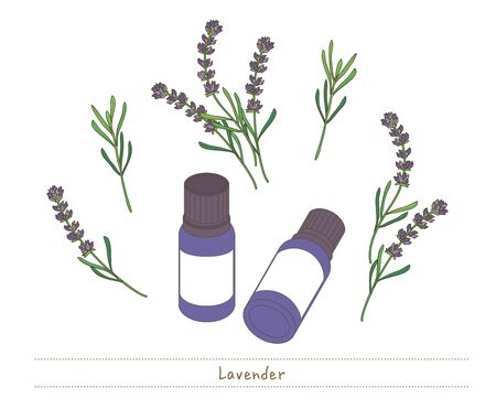 Aroma oil and small bottles - Lavender image