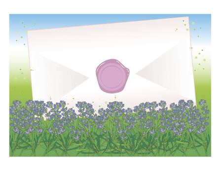 Envelope and sealed - Lavender field Background