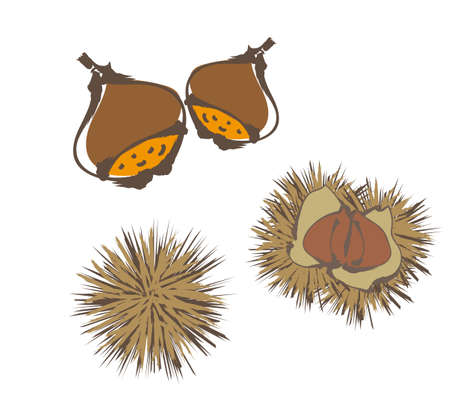 Chestnuts written with a brush - Chestnut picking image -