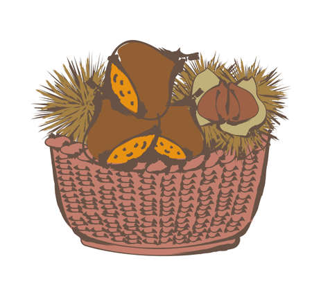 Autumn taste - Chestnuts in the basket
