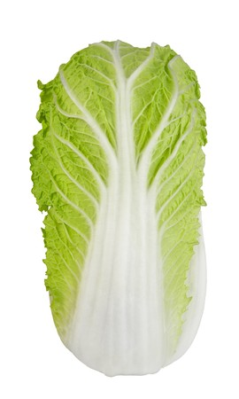 A napa cabbage, isolated on white. photo
