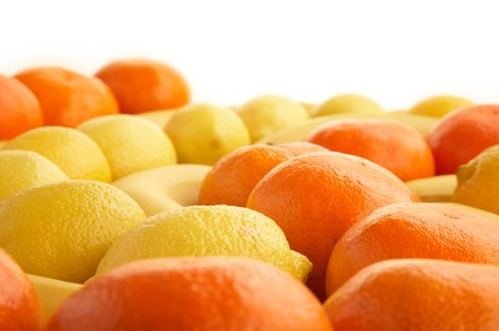 High quality collection of fruits and borders on a white background photo