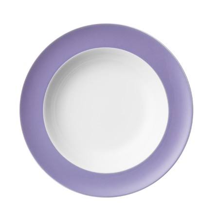 Clean white dinner plate with Lilac bandlet photo