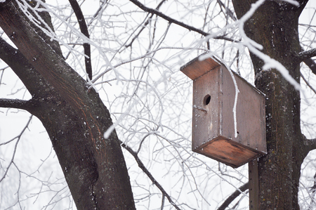 nesting box on a tree covered with hoarfrost