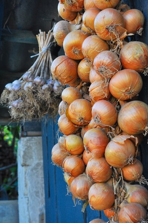 orange peel: bunch of onions and garlic are tied up to a shed roof Stock Photo