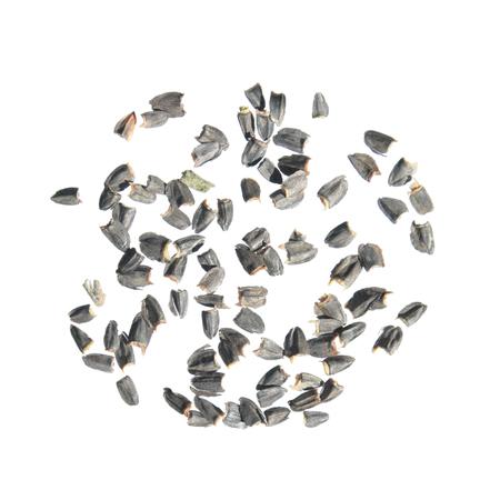 Seeds of upright prairie coneflower (Ratibida columnifera) isolated on white background