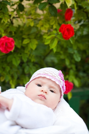Adorable newborn girl in roses garden photo