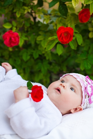 Adorable newborn girl in roses garden