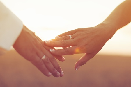 married together: Wedding couple holding hands on sunset background