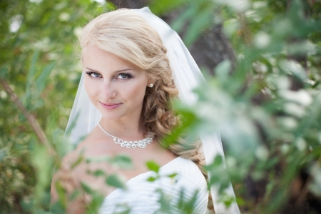 Attractive bride posing in the green leaves of the tree in her wedding day Stock Photo - 17152772
