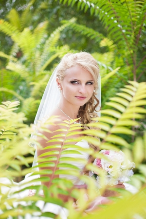 Attractive bride posing in the green leaves of the tree in her wedding day Stock Photo - 17152797