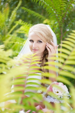 Attractive bride posing in the green leaves of the tree in her wedding day Stock Photo - 17152799