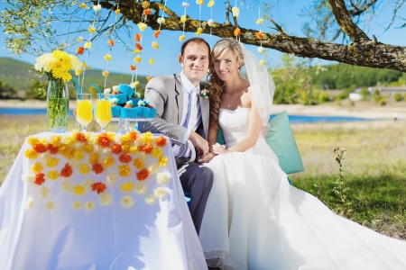 couple bride and groom at wedding decorated table in park Stock Photo - 17416194