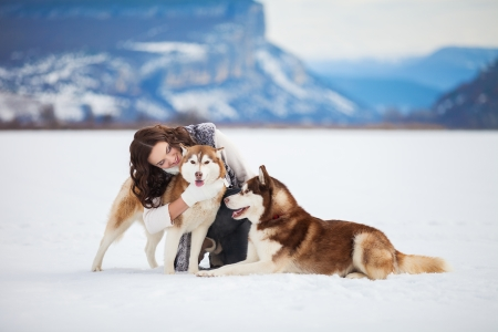 Girl embracing cute dog in winter park. The girl with the siberian husky photo