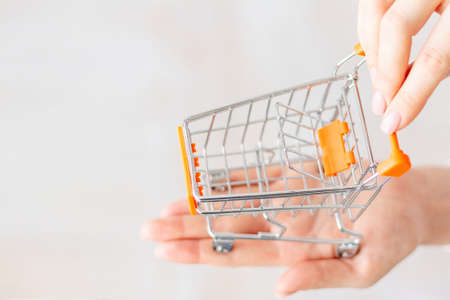 Womens hands hold a small shopping basket. Top view. closeup of a womans hand holding a small metal empty shopping basket in the palm of her hand. The concept of shopping. copy space for advertising