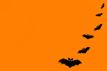 silhouettes of black paper bats on an orange background forming a frame, a flock of black bats on an orange background, Halloween concept, copy space. Flat lay for your design