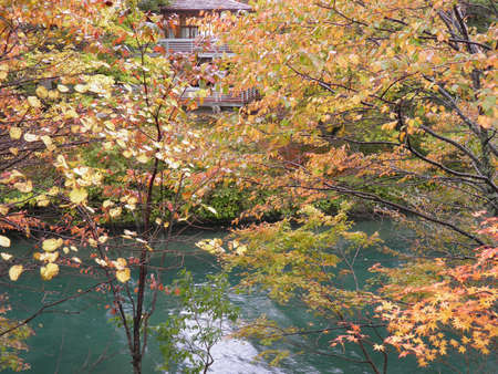 Autumn scene of Japan photo