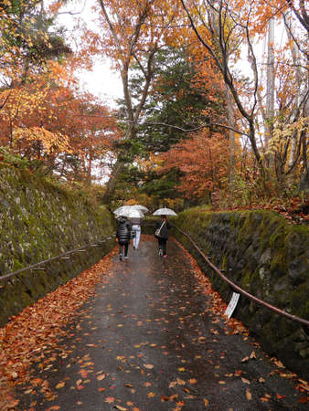 Autumn in Japan photo