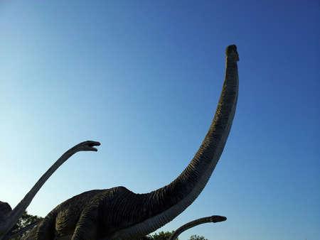 sauropod: Dinosaurios saur�podos