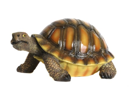 Turtle ceramic statuette. White background