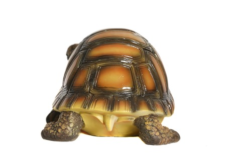 Turtle porcelain figurine. White background